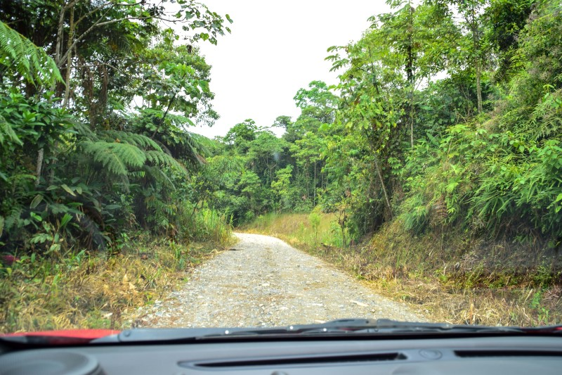Suchipakari Jungle Lodge Route