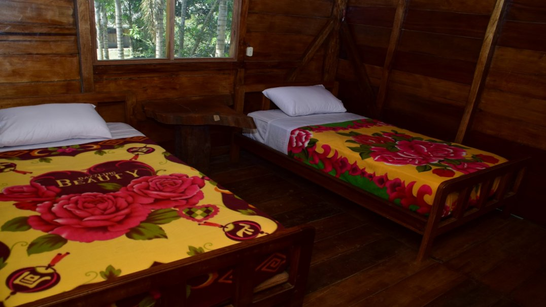Toucan Room for 2 people