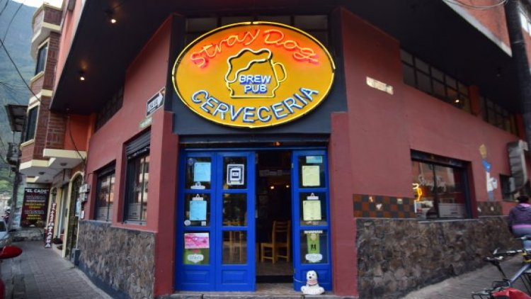 Stray Dog Brew Pub en Baños