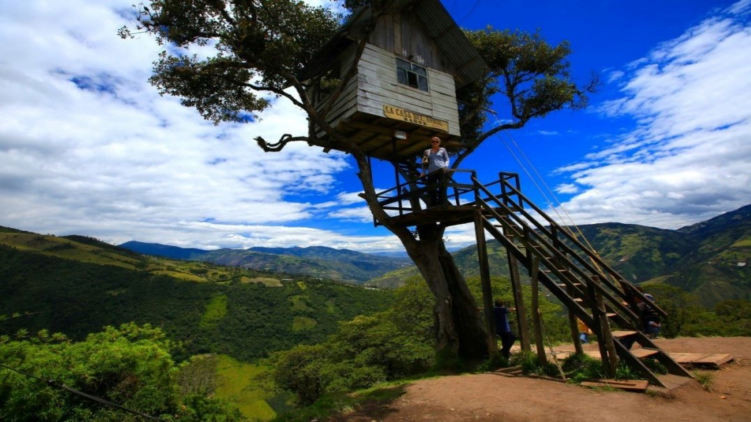 Tree House and the Swing of the End of the World