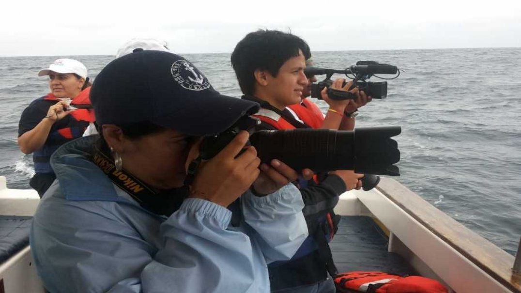 Volunteer in Whale Research Project in Ecuador