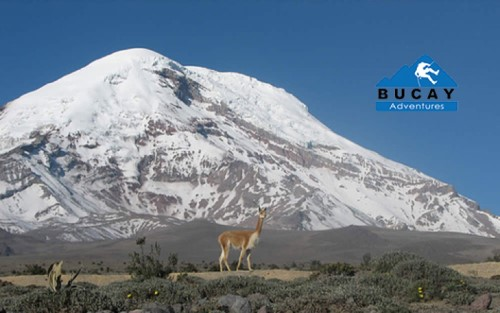 4 Days Tour Quito to Baños avenue of the volcanoes